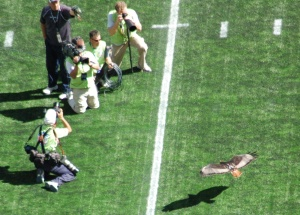 Taima makes a smooth landing before the game