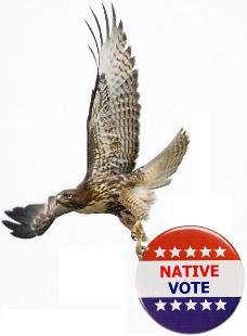 native-vote-hawk