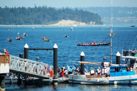 canoes gathering in the Sound